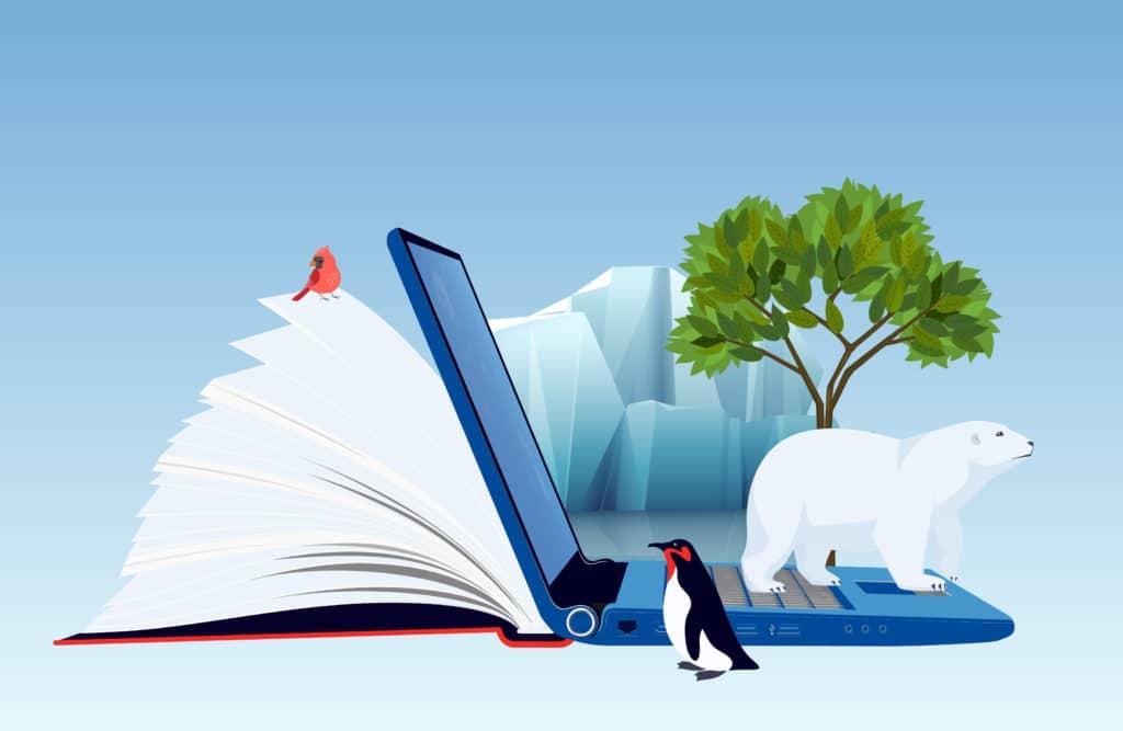 Article : Papier et environnement : incompatibles ? pas vraiment ;)